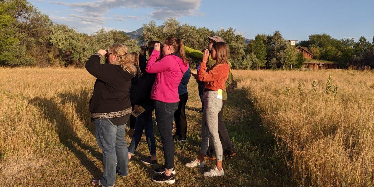 Utah Birds and Ecosystems